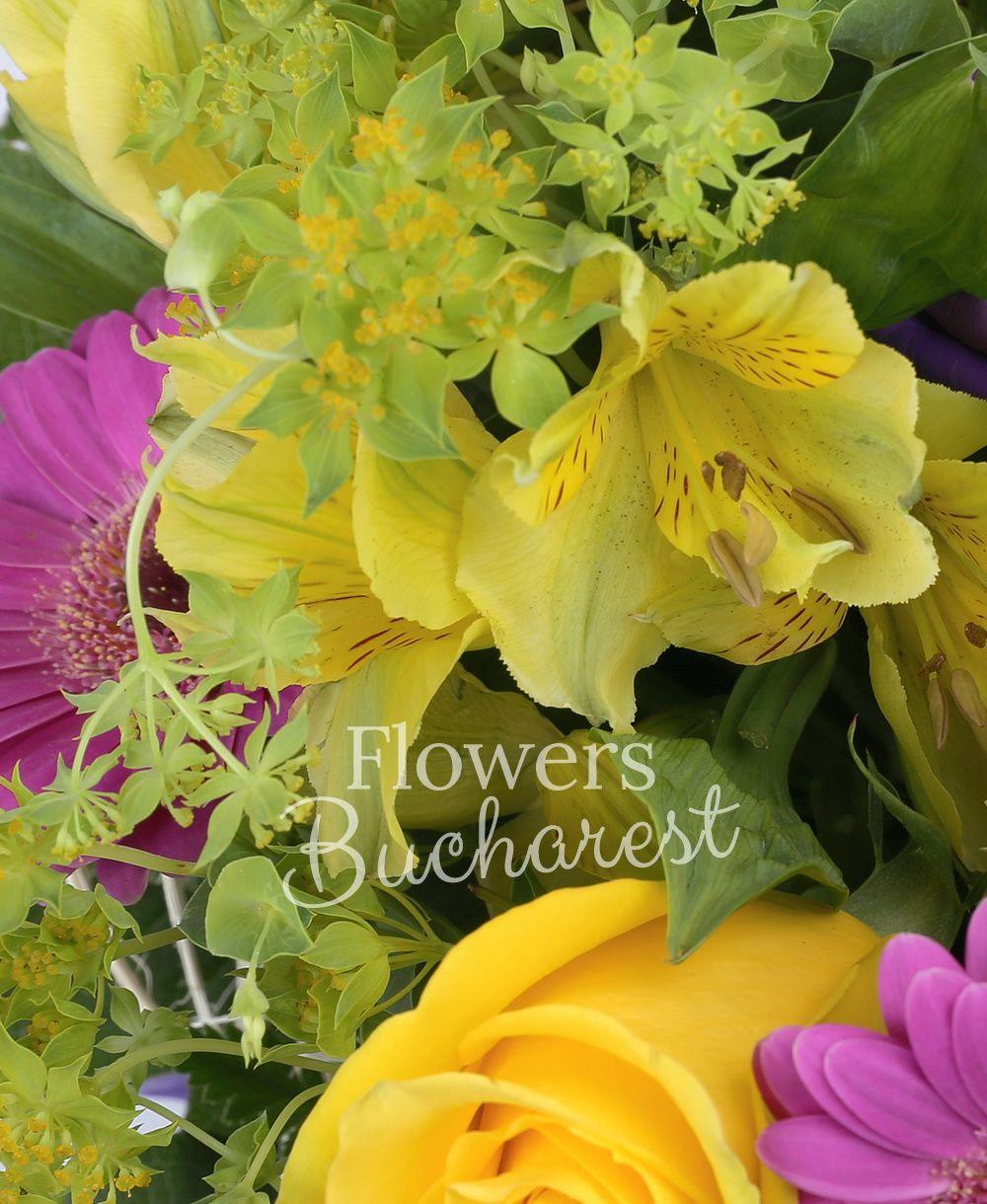 3 yellow roses, 5 cyclam gerbera, 3 yellow alstroemeria, 3 mauve lisianthus, greenery