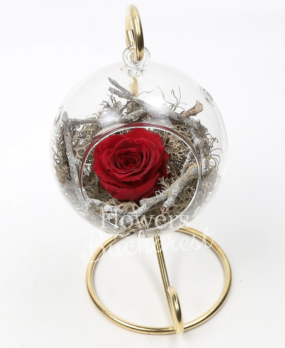 1 cryogenic rose in glass globe