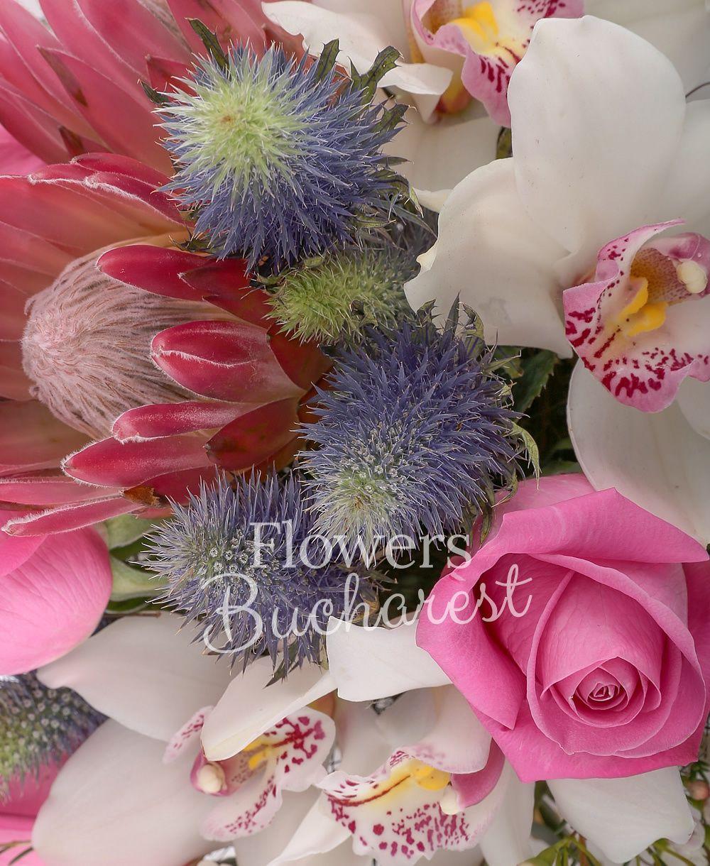 5 cyclam roses, 2 pink gerbera, 2 proteea, 2 leucadendron, 2 eryngium, white cymbidium, greenery