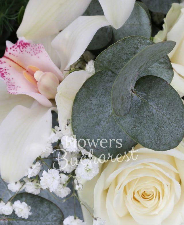 5 trandafiri albi, 3 alstroemeria alba, cymbidium alb, gypsophila, eucalypt, asparagus