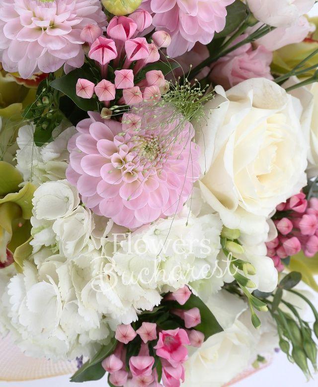 5 trandafiri albi, 3 dalii roz, 3 lisianthus roz, 5 frezii albe, 3 bouvardia roz, cymbidium verde, 2 clematis, panicum, eucalypt