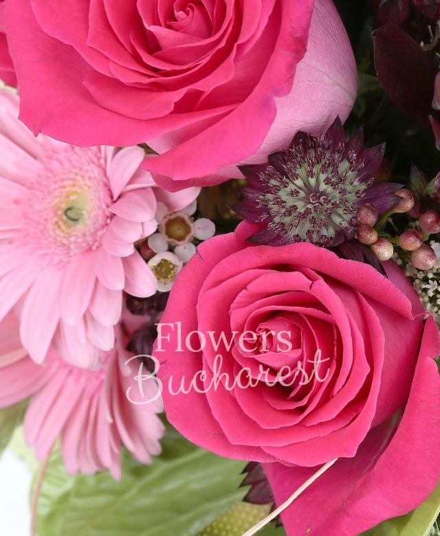 5 trandafiri cyclam, 3 gerbera roz, 3 anthurium verde, 2 leucadendron, 2 trachelium alb, cymbidium alb, waxflower roz, astranția grena, eucalypt, cuib