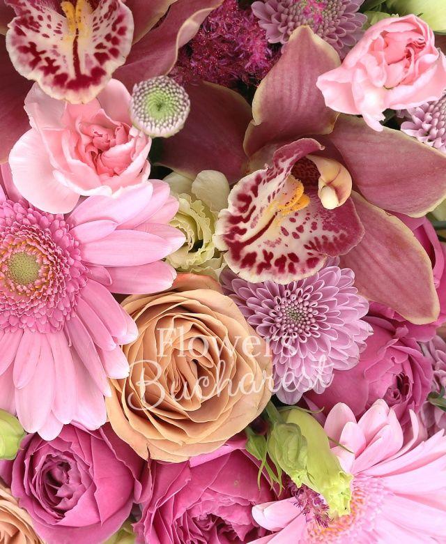 2 trandafiri cappuccino, 2 gerbera roz, 2 miniroze cyclam, 2 lisianthus roz, 2 santini roz, 2 astilbe grena, cymbidium grena, garofițe roz, eucalypt, cutie