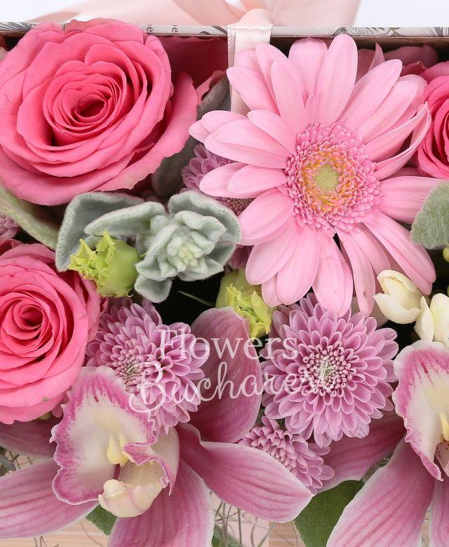 5 trandafiri cyclam, 3 gerbera roz, 5 frezii albe, 3 garoafe cyclam, 2 santini roz, 2 lisianthus roz, cymbidium roz, astranția, eucalypt, tillandsia, carte