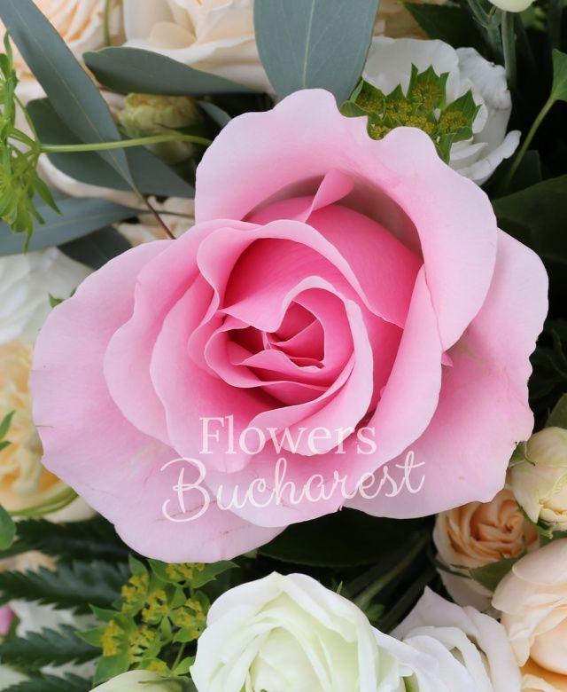 5 trandafiri roz, 5 miniroze crem, 3 bouvardia roz, 5 lisianthus alb, cymbidium alb, bupleurum, eucalypt, salal