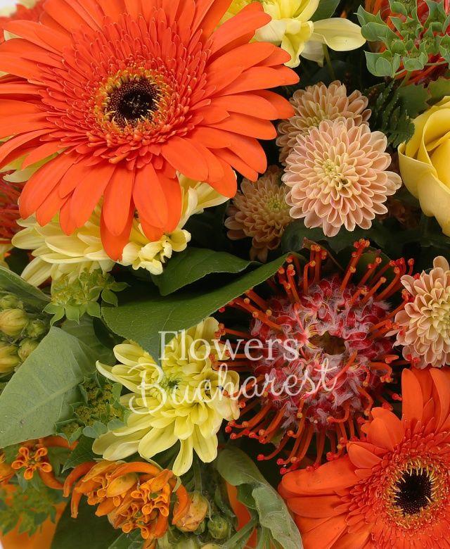 5 trandafiri galbeni, 5 gerbera portocalie, 3 leucospermum, 2 crizanteme galbene, 3 santini galben, 3 asclepias, bupleurum, salal