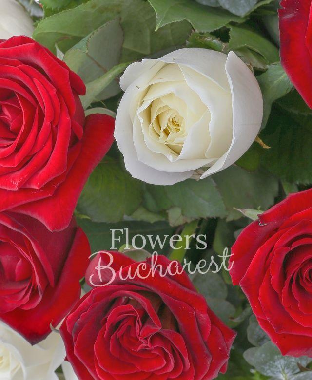 15 trandafiri rosii, 14 trandafiri albi, eucalypt, salal