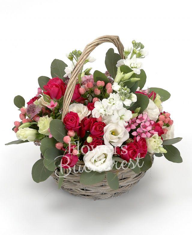 2 mathiolla alba, 4 miniroze cyclam, 4 lisianthus alb, 4 hypericum roz, 4 bouvardia roz, eucalypt, coș