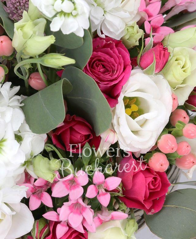 3 mathiolla alba, 5 miniroze cyclam, 5 lisianthus alb, 5 hypericum roz, 5 bouvardia roz, eucalypt, coș