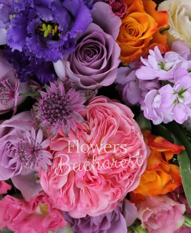 4 trandafiri piano, 6 trandafiri mov, 3 trandafiri portocalii, 4 mathiolla mov, 4 lisianthus mov, 2 lisianthus roz, astranția grena, senecio, panicum, eucalypt