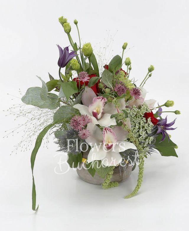 3 trandafiri rosii, 3 lisianthus verde, cymbidium alb, 2 clematis, 1 eryngium, astranția roz, ami, amaranthus verde, panicum, eucalypt, salal, vas ceramic