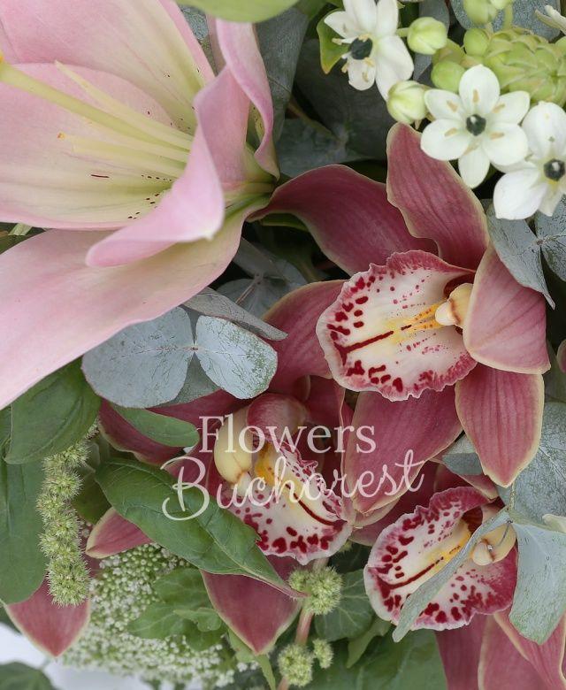 2 crini roz, 3 cale grena, 5 ornithogalum alb, cymbidium grena, ami, amaranthus, iedera, eucalypt