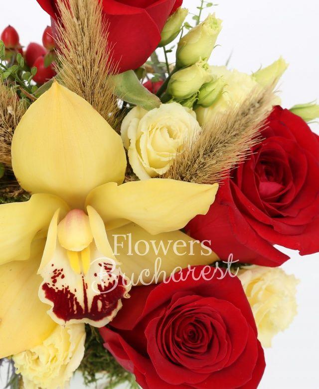 3 trandafiri rosii, 2 lisianthus crem, cymbidium galben, 2 eryngium, 3 hypericum roșu, papura, săculeț