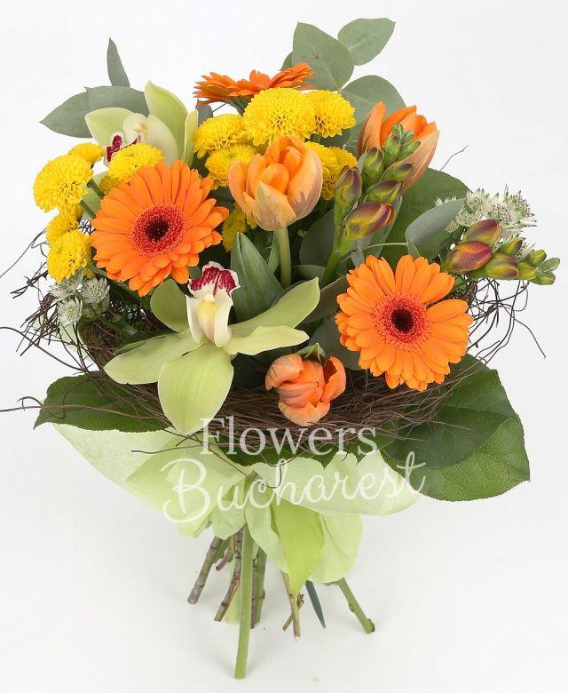 3 gerbera portocalie, 2 santini galben, 3 lalele portocalii, 2 frezii portocalii, cymbidium verde, eucalypt, salal, cuib