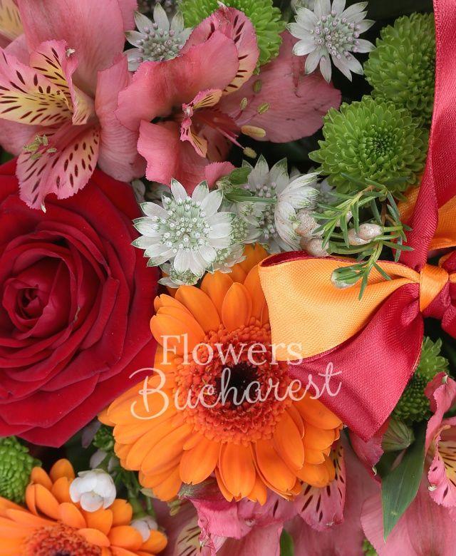 5 trandafiri rosii, 6 gerbera portocalie, 3 alstroemeria roz, 3 hypericum, 3 santini verde, astranția alba, waxflower alb, salal, coș