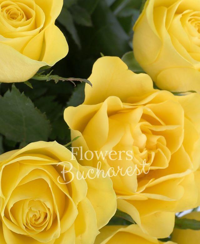 29 trandafiri galbeni, salal