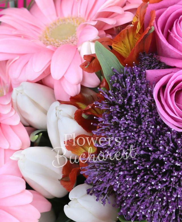 7 trandafiri roz, 7 cale mov, 5 trachelium mov, 5 alstoemeria portocalie, 10 lalele albe, 7 gerbera roz, beargrass, aspidistra, salal