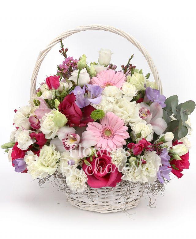 4 trandafiri cyclam, 4 miniroze cyclam, 4 gerbera roz, 3 lisianthus alb, 7 frezii mov, cymbidium alb, 4 garoafe albe, waxflower roz, eucalypt, tillandsia, coș