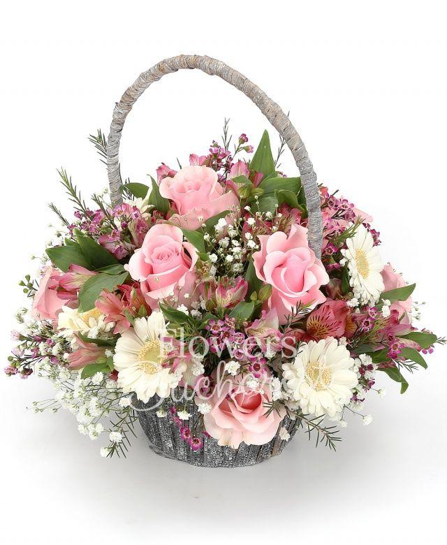6 trandafiri roz, 5 gerbera alba, 4 alstroemeria roz, gypsophila, waxflower roz, coș