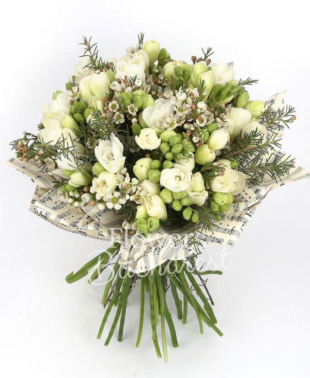 35 frezii albe, waxflower