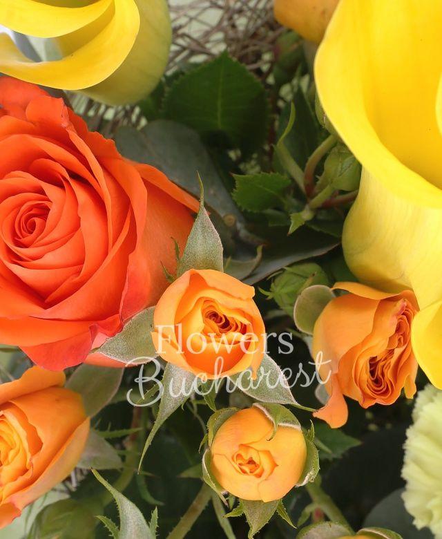 3 trandafiri portocalii, 3 cale galbene, 3 miniroze portocalii, 3 garoafe verzi, eucalypt, cuib