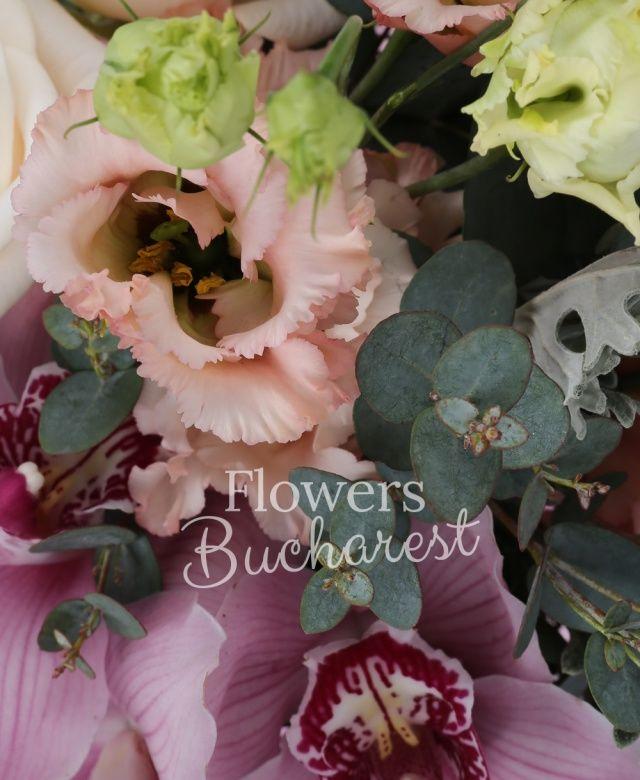 3 trandafiri crem, 3 lisianthus roz, 2 eryngium, cymbidium grena, eucalypt, senecio, cuib