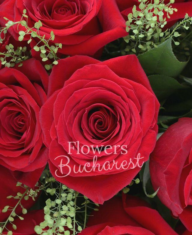 19 trandafiri rosii, salal