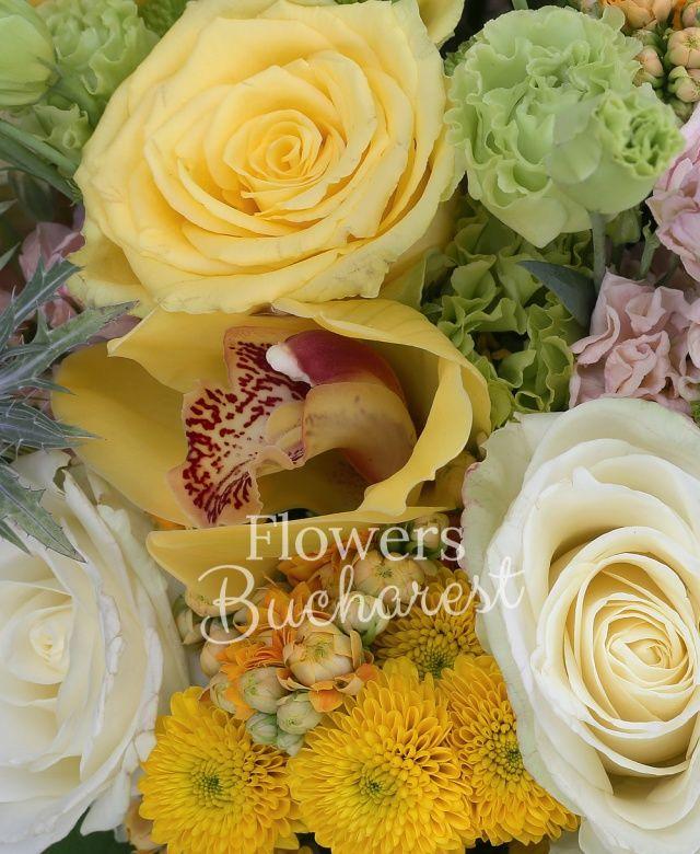 5 trandafiri galbeni, 5 trandafiri crem, 5 santini galben, 5 santini verde, 7 matthiola crem, 5 craspedia, 3 eryngium, 3 lisianthus verde, 5 kalanchoe portocalii, cymbidium galben, eucalypt, salal