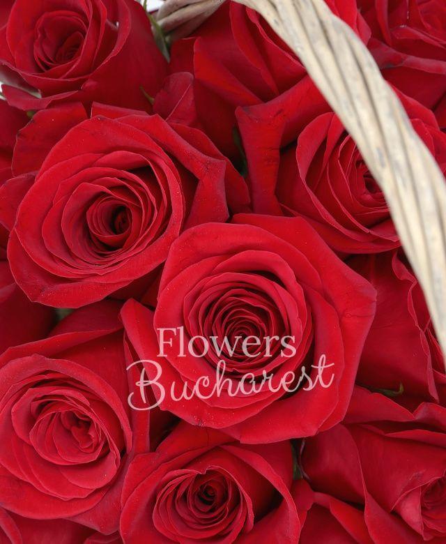 25 trandafiri rosii, coș