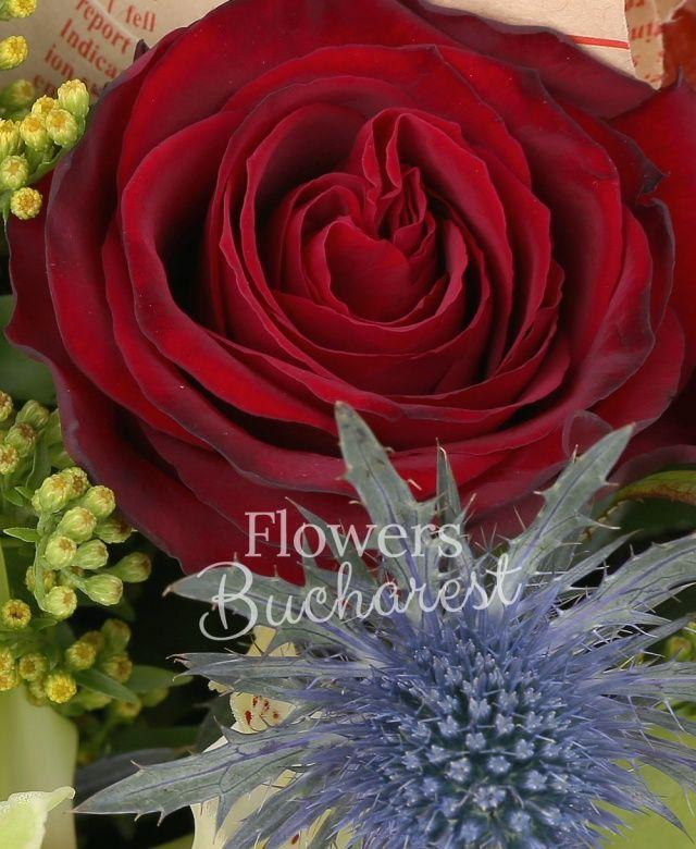 3 trandafiri rosii, 2 trandafiri portocalii, 3 cale cyclam, cymbidium verde, eryngium albastru, solidago, rhipsalis, eucalypt, salal
