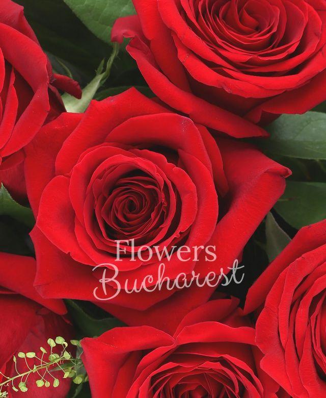 15 trandafiri rosii, salal