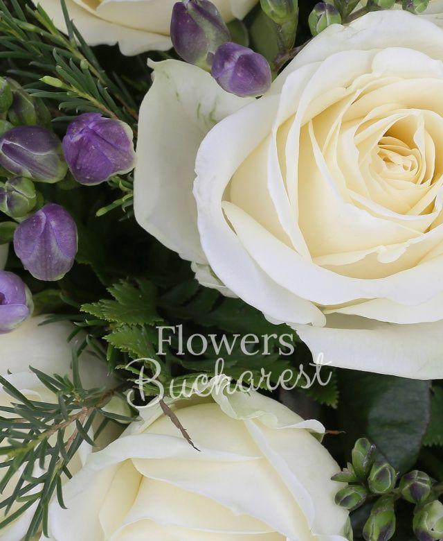 10 trandafiri albi, 20 frezii mov, waxflower