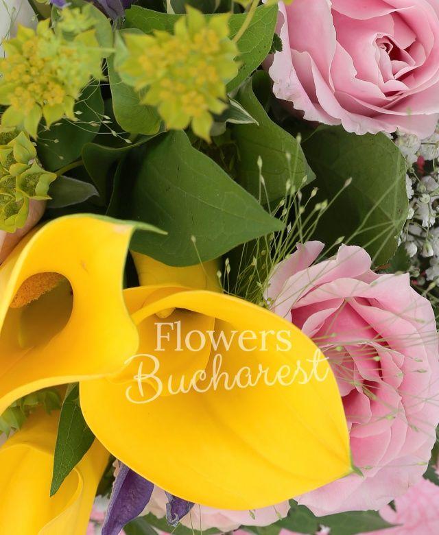 2 cale galbene, 2 clematis mov, 4 trandafiri roz, cymbidium alb, panicum, bupleurum, salal, cuib