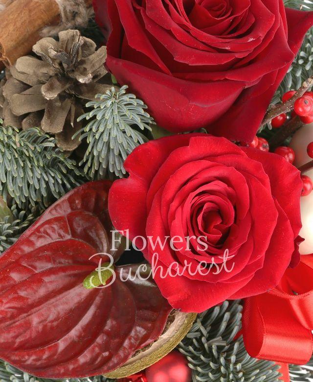 3 trandafiri rosii, 2 ilex, 2 anthurium, ornamente, brad argintiu, vas ceramic