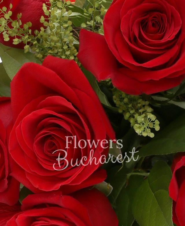 9 trandafiri rosii, salal, cuib