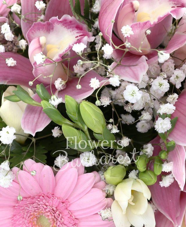 5 trandafiri roz, 15 frezii albe, 7 gerbera roz, cymbidium roz, waxflower roz, gypsophila