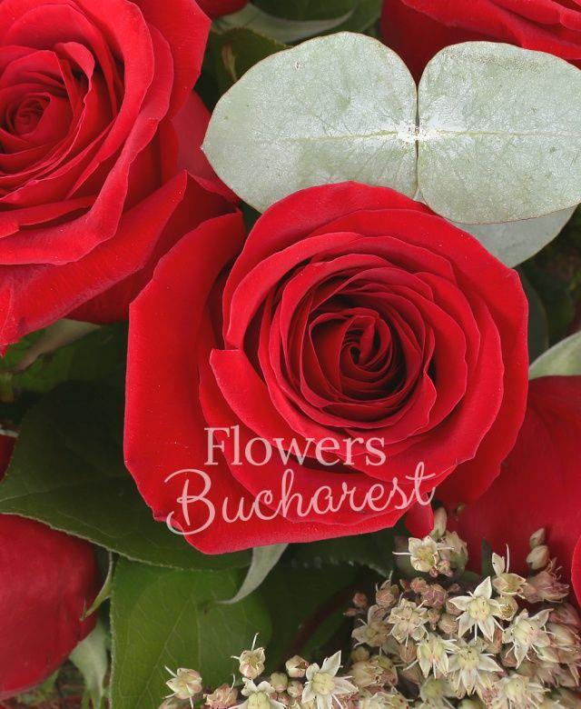 6 trandafiri rosii, kalanchoe, eucalypt, salal, cuib