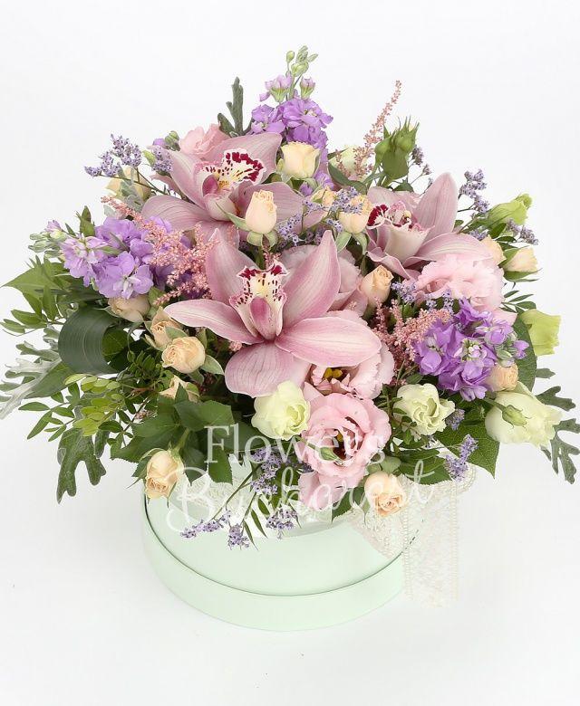 5 matthiola, 5 astilbe roz, 5 miniroze crem, 5 lisianthus, cymbidium roz, statice, pistachio, aspidistra, salal, cutie lux