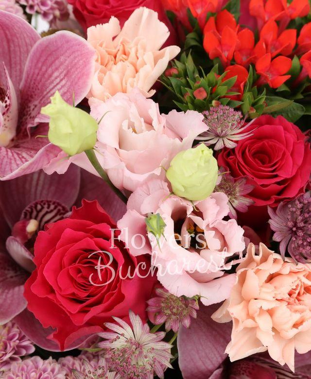 4 trandafiri cyclam, 4 santini roz, 4 bouvardia roșie, 4 lisianthus roz, 4 garoafe roz, cymbidium grena, 2 anthurium verde, eucalypt, astranția, aspidistra, cuib