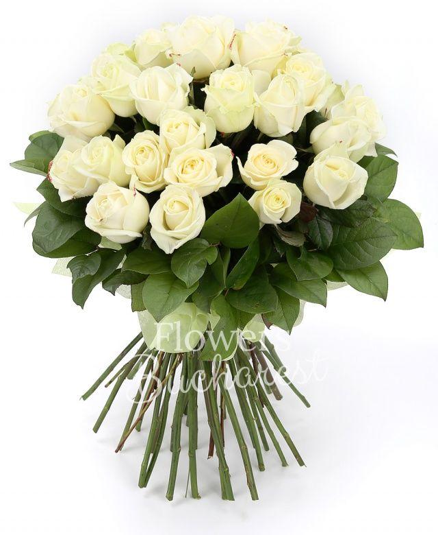 45 trandafiri albi, salal