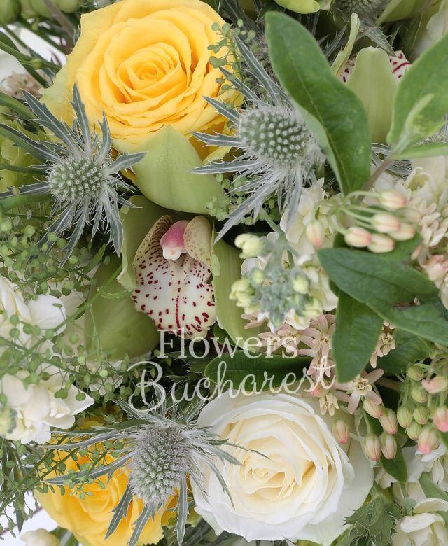 5 craspedia galbene, 3 trandafiri albi, 3 trandafiri galbeni, 5 lisianthus verde, 5 matthiola alba, 3 eryngium, cymbidium verde, eucalypt