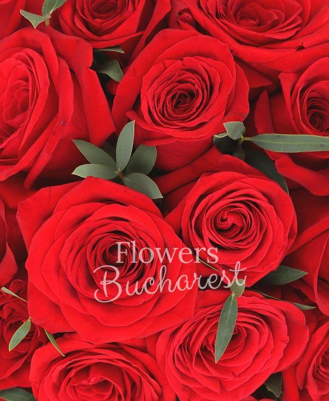 31 trandafiri rosii, eucalypt, cutie pătrată