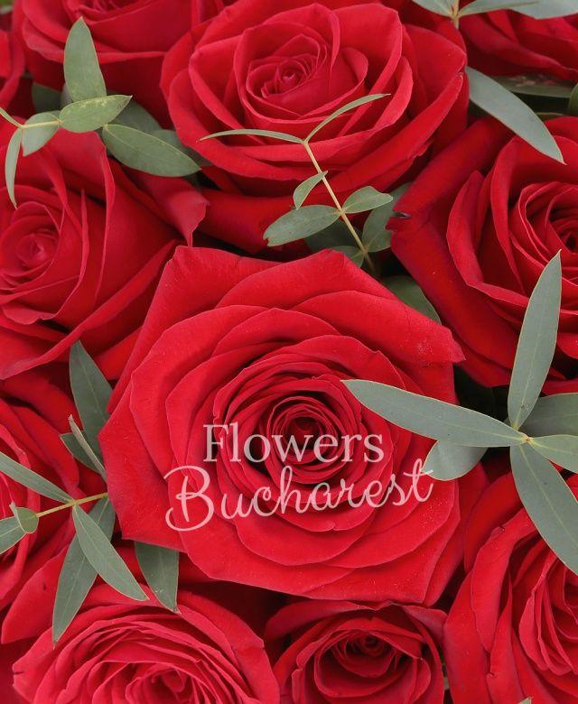 39 trandafiri rosii, eucalypt, cutie rotundă