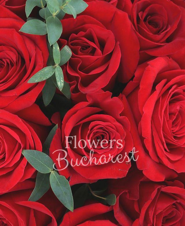 33 trandafiri rosii, eucalypt, cutie rotundă