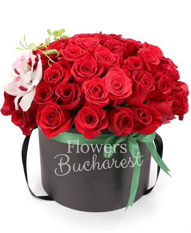 45 trandafiri rosii, cymbidium alb, cutie