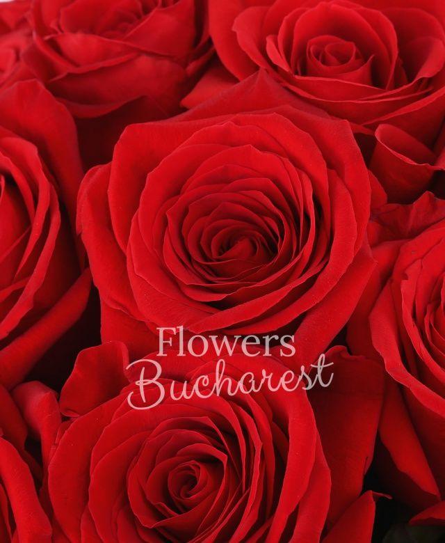 43 trandafiri rosii, cutie rotundă