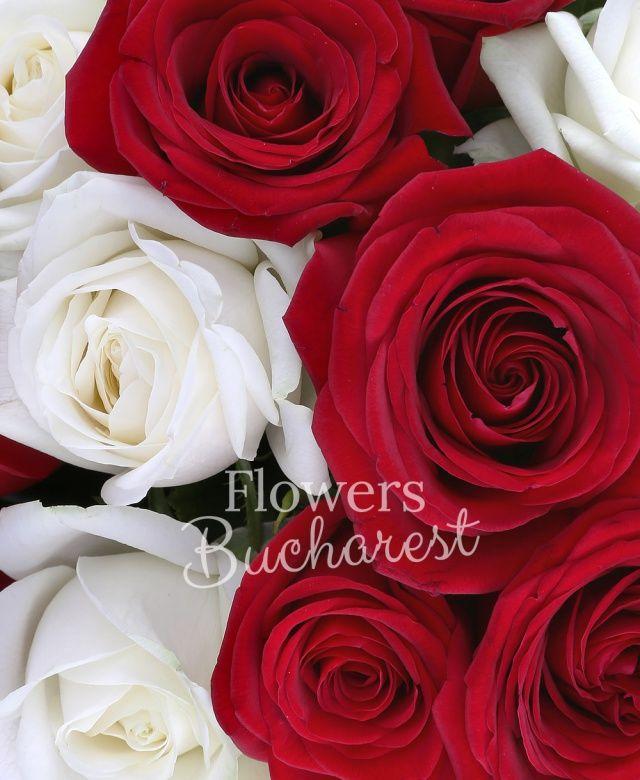 14 trandafiri albi, 15 trandafiri rosii, salal