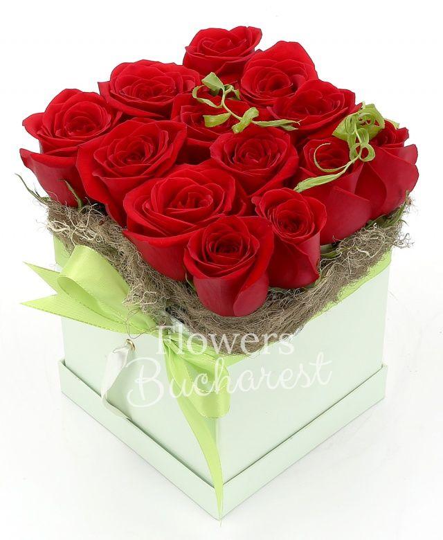 13 trandafiri rosii, tillandsia, cutie pătrată