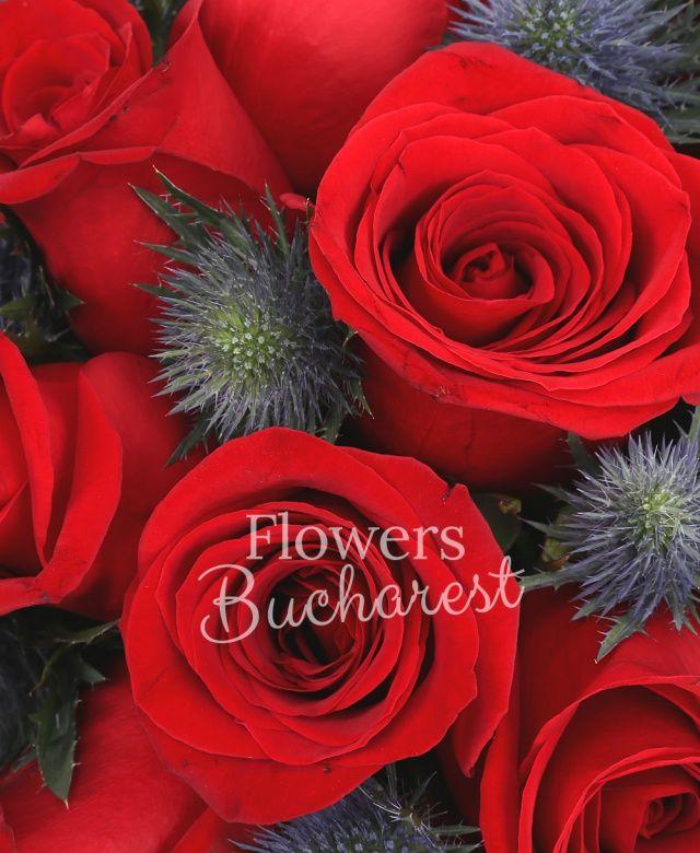 10 trandafiri rosii, 5 eryngium albastru, cutie lux