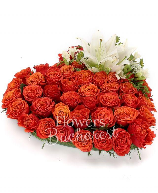 50 trandafiri portocalii, 1 crin alb, 5 frezii albe, 2 trachelium mov, bupleurum, suport inima